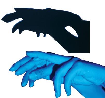 手影里的动物世界 安徽省今日教育集团