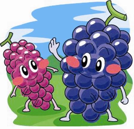 水果创意线描画